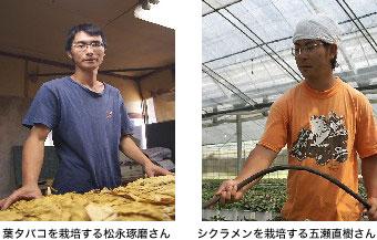 葉タバコを栽培する松永琢磨さん シクラメンを栽培する五瀬直樹さん