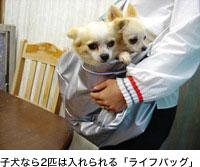 子犬なら2匹は入れられる「ライフバッグ」