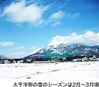 太平洋側の雪のシーズンは2月~3月頃