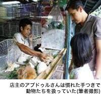 店主のアブドゥルさんは慣れた手つきで、動物たちを扱っていた(筆者撮影)