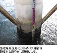 急激な潮位変化がみられた場合は海岸から速やかに避難しよう。