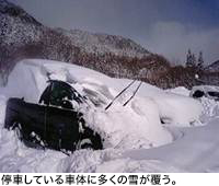 停車している車体に多くの雪が覆う。