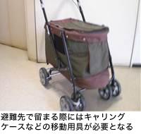 避難先で留まる際にはキャリングケースなどの移動用具が必要となる